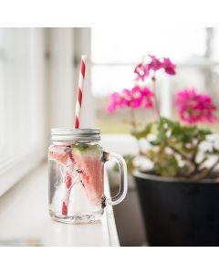Norgesglasset Norgesglass Seidel Glass 2pk m/Sugerør